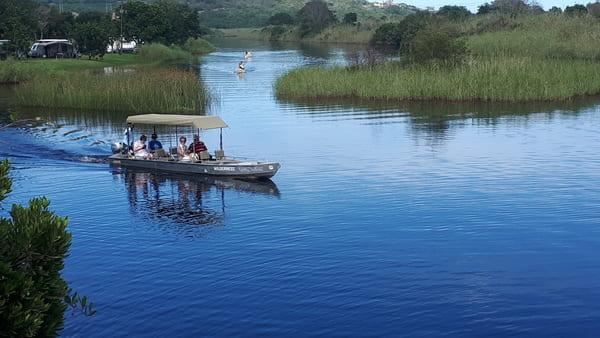 boat cruising on river