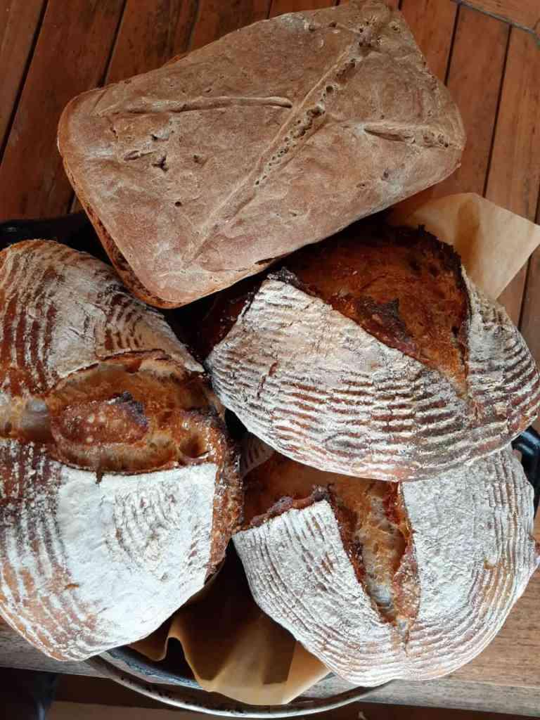 loaves of artisanal bread