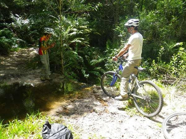 Men on mountain bikes